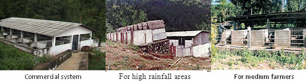KIRAN Empowering Agricultural Knowledge and Innovation in North EastRabbit housing systems were developed for different production systems viz small scale  medium scale and commercial  Low cost housing systems were developed